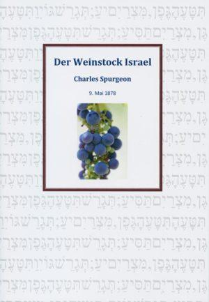 Der Weinstock Israel-0