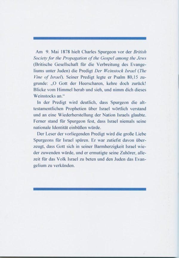 Der Weinstock Israel-187