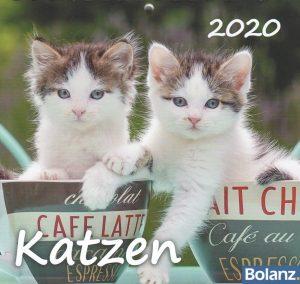 Katzen 2020 Tischkalender