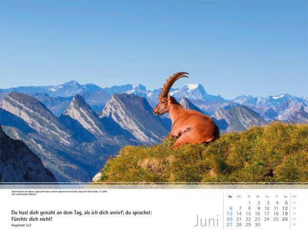 179599021 06 600x457 - Schweizer Bergkalender 2021