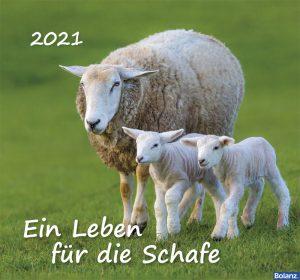 179618021 13 300x280 - Ein Leben für die Schafe 2021 Wandkalender