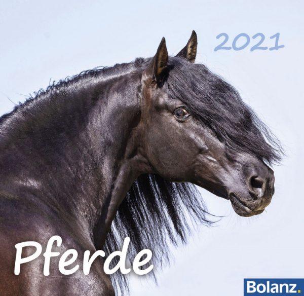179625021 13 600x584 - Pferde 2021 Tischkalender
