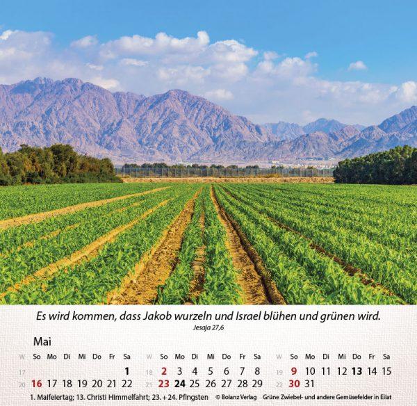 179658021 05 600x584 - Israel Shalom 2021 Tischkalender