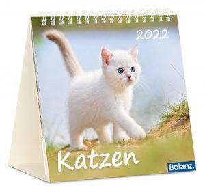 Katzen 2022 Tischkalender